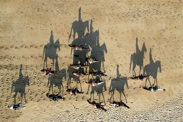Pyramid_of_horses